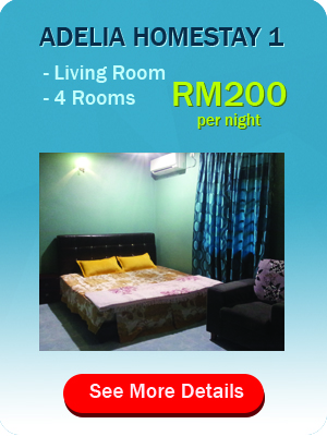 package+adelia+homestay+1
