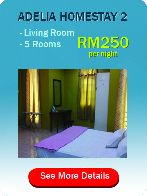 package+adelia+homestay+2