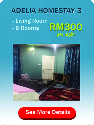 package+adelia+homestay+3