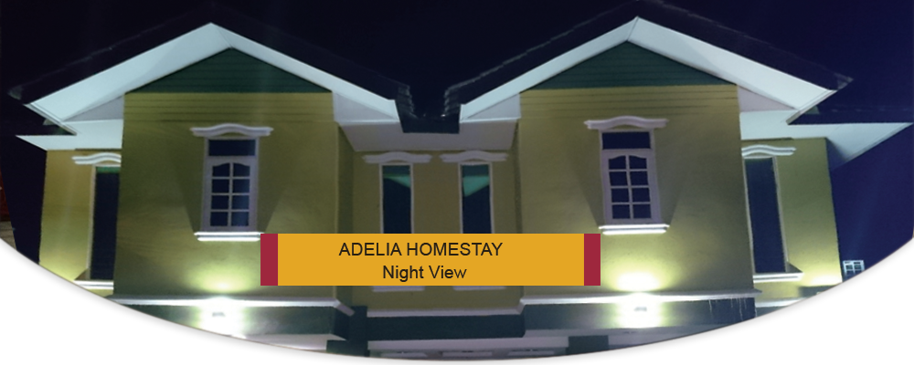 Adelia Homestay – Night View