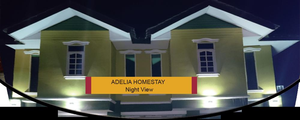 Adelia Homestay – Night View